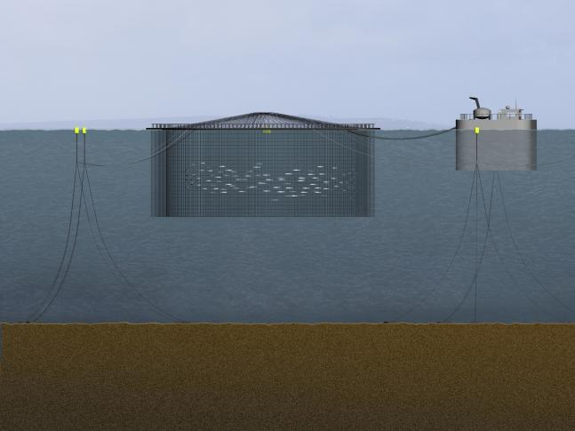 Artist's Impression of Deep Sea cage